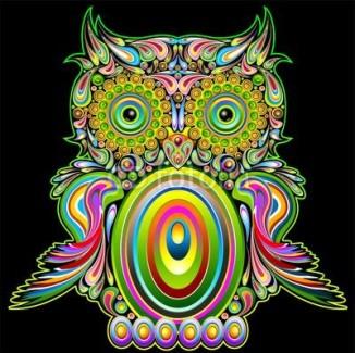 Owl Psychedelic Pop Art Design