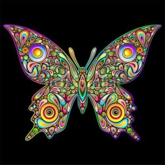 Butterfly Psychedelic Art Design