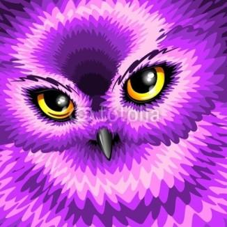 Pink Owl Eyes