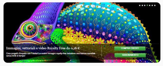 Chameleon Fantasy Rainbow Colors © bluedarkat