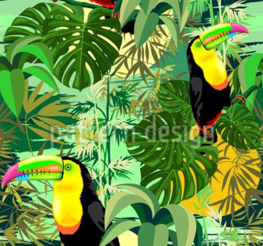Amazon Toucan © BluedarkArt